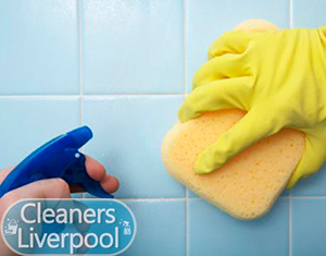 Cleaners Helsby WA6